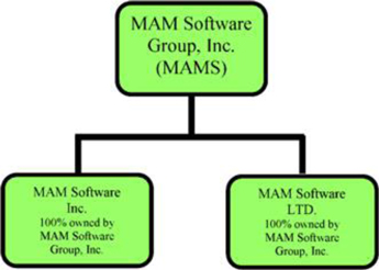 Mam Software Group Inc Form 10 K September 24 2015